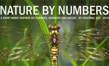 رابطه اعداد و طبیعت