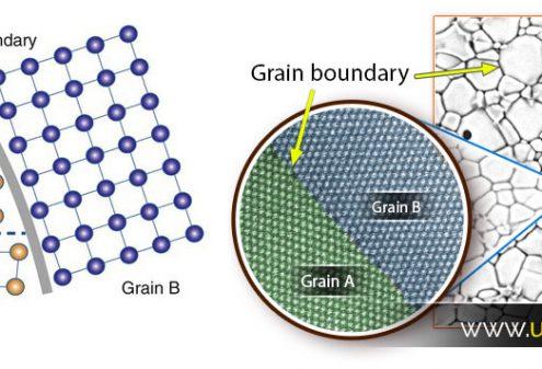 تصاویر واقعی از دانه و مرز دانه | اندازه دانه چیست؟